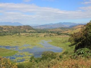 Moeras/ wetlands