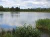 Meertje/ small lake