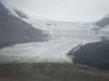 Athabasca gletsjer/ glacier