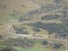 Schapen optocht/ long line of sheep