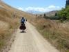 Pad/ trail