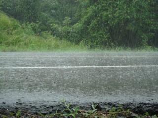 Hoosbui/ downpour