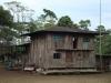 Nog een jungle huisje/ another jungle house