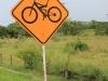 Fietsers/ cyclists