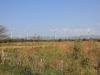 Windmolens/ windmills