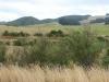 Groene heuvels/ green hills